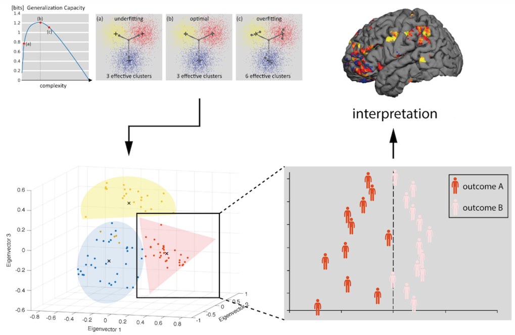 Fig. 4. Computational assays are applied to individualized data (neuroimaging, electrophysiology, behaviour) to yield predictive models. These models may be embedded with multivariate analyses, which are utilized to estimate the optimal fit for subsequent unsupervised as well as supervised machine-learning analyses. This computational structure enables mechanistically interpretable predictions about behavioral or clinical states.